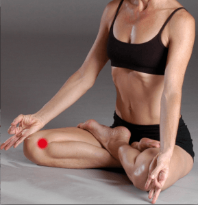 What's Causing That Knee Pain?