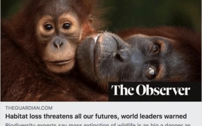 Biodiversity Loss Threatens Humanities Survival